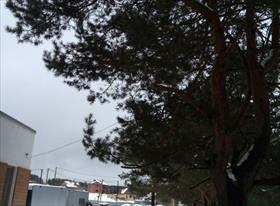 Монтаж уличного видеонаблюдения и 4G интернета в п. Бавария рядом с Константиновкой.