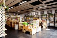 Дизайн магазина в эко стиле