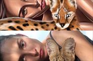 Электронные портреты по фото